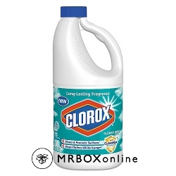 Clorox Regular Bleach 64 ounce bottles