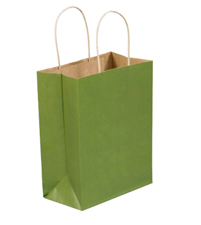 8x4.5x10.25 Green Tea Tinted Shopping Bags