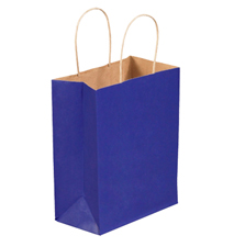 8x4.5x10.25 Parade Blue Tinted Shopping Bags