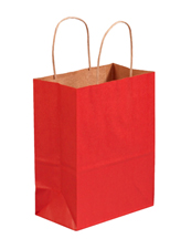 8x4.5x10.25 Scarlet Tinted Shopping Bags