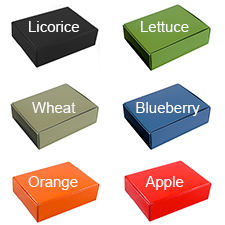 12 1/8x9 1/4x4 Colored Die Cut Mailer Boxes