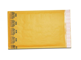 Ecolite 00 5x10 Bubble Envelopes 250 CT