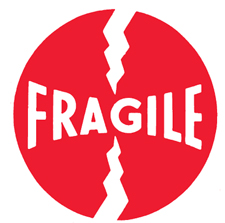 "4""x4\"" Fragile Labels"