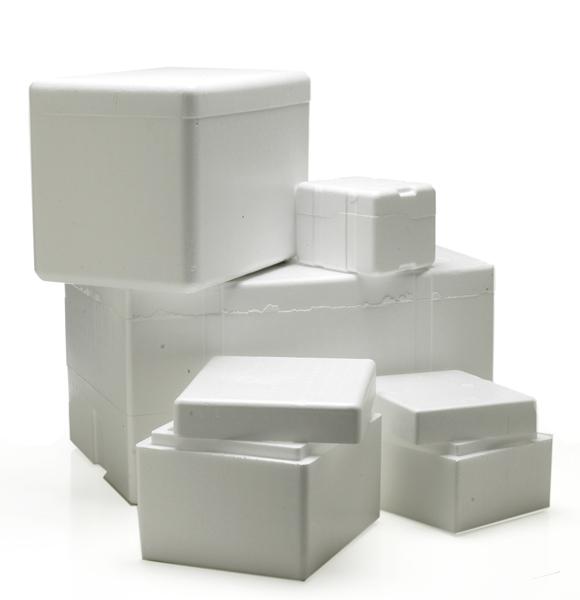 6x4 5x4 Mini Styrofoam Coolers Foam Cooler Boxes
