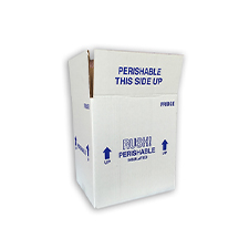 9.5x7.5x10.5 13 Quart Fridge Styrofoam Coolers