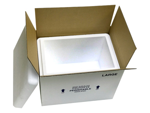 15.375x9.5x10.5 27 Quart Large Styrofoam Coolers