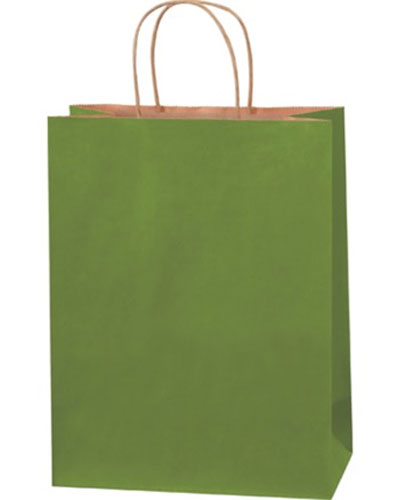 10x5x13 Green Tea Tinted Shopping Bags