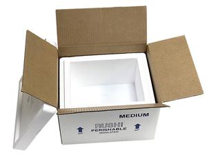 9be31405612 10.5x8.5x6.25 9 Quart Medium Styrofoam Coolers