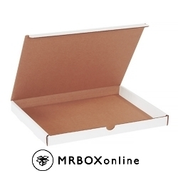 12.125x9.25x1 White Die Cut Literature Mailer Boxes