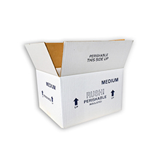 10.5x8.5x6.25 9-Quart Medium Styrofoam Coolers