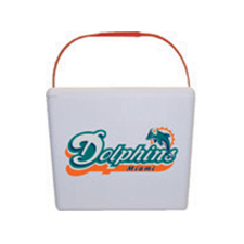 NFL and College Foam Coolers