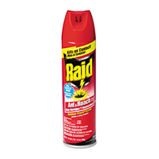 Raid Ant and Roach Killer Outdoor Scent