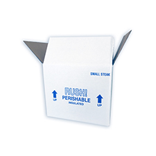 12x10x9 19 Quart Small Steak Styrofoam Cooler